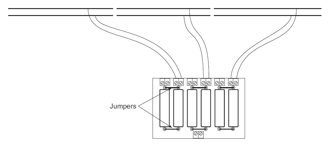 CP6_2amp_sections.JPG